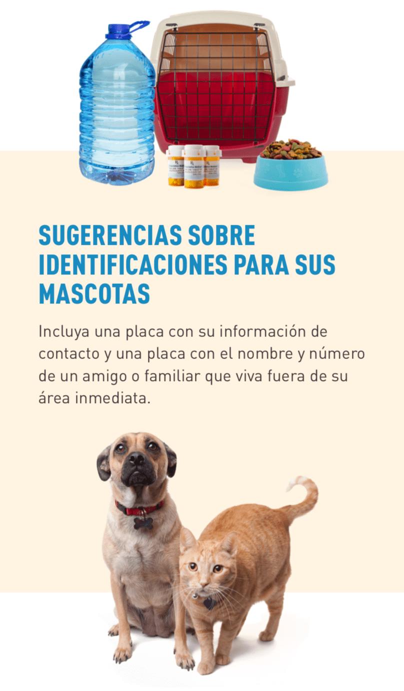 Imagen de artículos de un kit de materiales de emergencia para mascotas, incluyendo agua, medicinas, comida y jaula