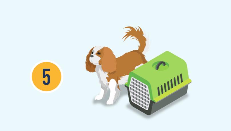 El número cinco con ilustración de un perro y su jaula.