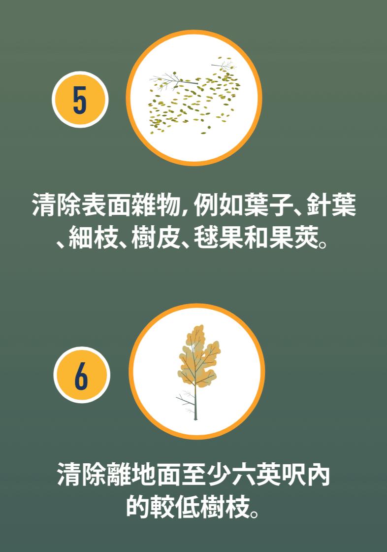 葉子和細枝的圖示,以及較低樹枝的圖示。