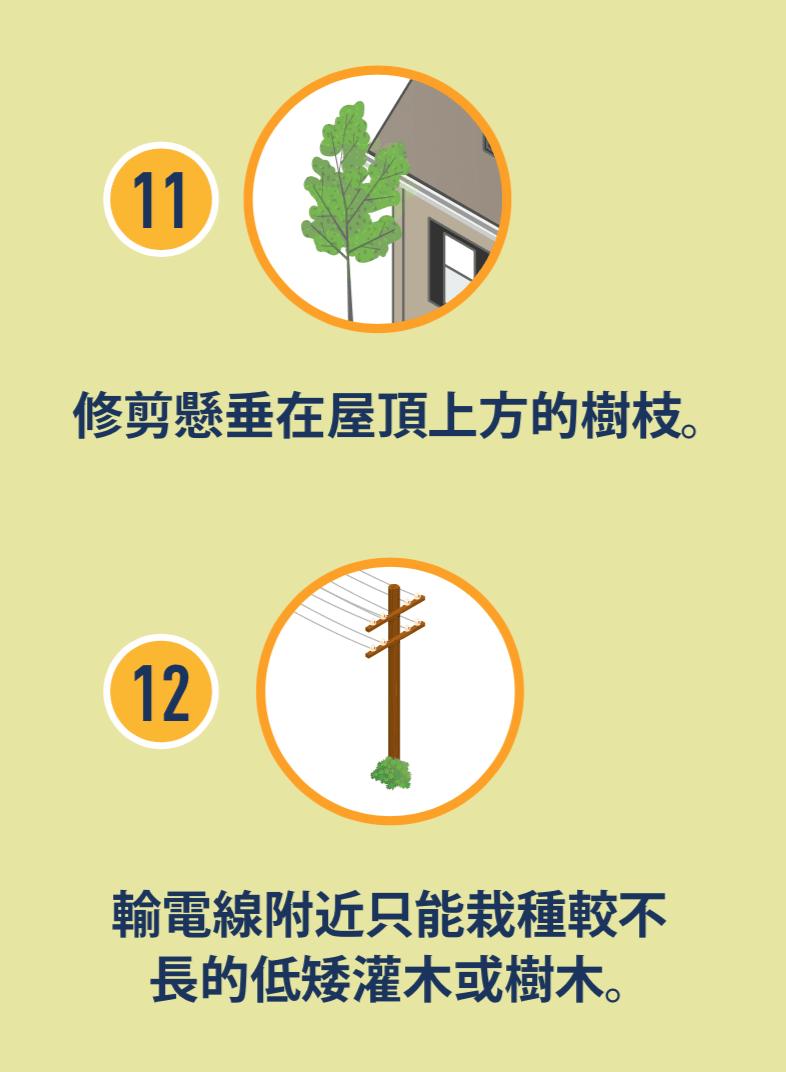 樹枝懸垂在屋頂上方的圖示,以及電線附近有矮灌木的圖示。