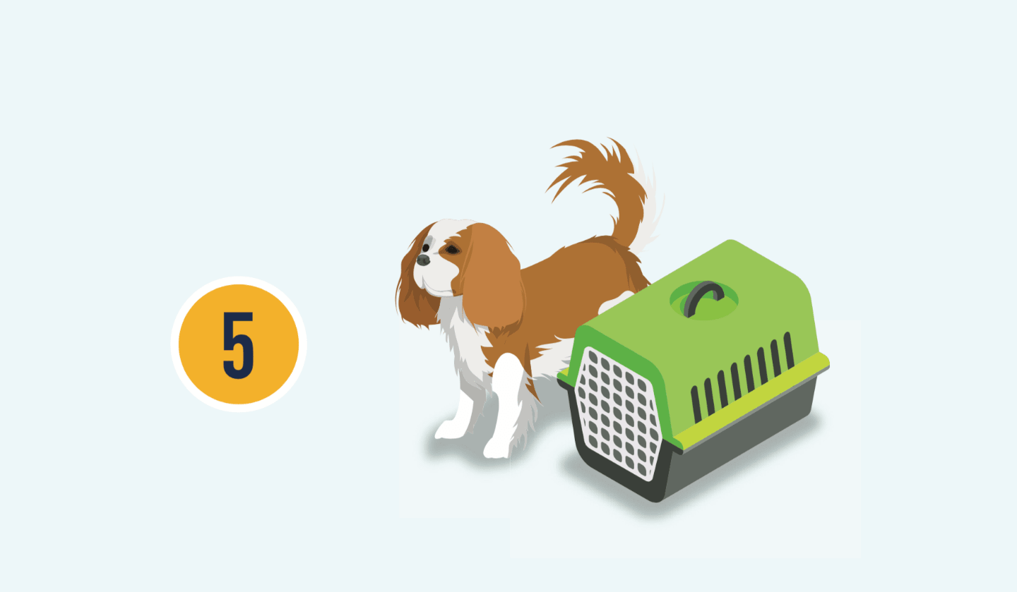 The number five with illustration of a dog and crate.
